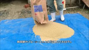 お米に虫がわいたのですが食べられるのでしょうか